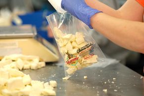 Hansen's Dairy cheese curd filling